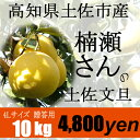 2月限定!高知県土佐市産【贈答用】楠瀬さんの土佐文旦 4L/10kg