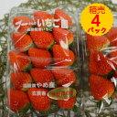 【送料無料】箱売 いちご イチゴ さがほのか 1箱4パック