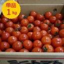 【九州産】単品 ミニトマト(福岡産・熊本産)1kg