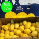 箱売 レモン 1箱(17kg)