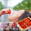 【送料無料】いちご イチゴ 食べ比べセット 4種4パック入り(あまおう入ってます)