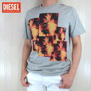 DIESEL ディーゼル メンズ トップス半袖 Tシャツ カットソー 丸首 クルーネック T-PIR/グレー サイズ:M