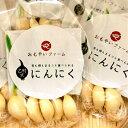 【クーポンで最大24%OFF】楽天スーパーSALE 福岡県 若松産 高品質 スプラウト 発芽 にんにく 5袋 芽も根もまるごと食べられる 無農薬の水耕栽培でにおいが残りにくい 乙村式 にんにく