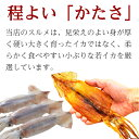 国産 焼 するめ イカ 味付き 1パック ( 2枚入 )...