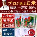 ポイントバック祭り 期間限定クーポン付 無洗米 プロが選ぶ厳選一等 米 食味ランクA 森のくまさん 10kg 平成29年産 精米 熊本県産