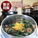 国産   山菜釜飯 の具 ( 5人前 )  水を使わず即席で美味しい   早炊き米 ・ 具 入り 釜めしの素 のセット   料亭の味 炊き込みご飯