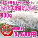 【送料無料!年に1度のキャンペーン】和歌山産!春のとれたて釜揚げしらす 800g【smtb