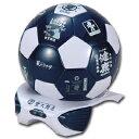 豊天商店 サッカーボール型冷温庫4L