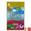 ショッピングレスベラトロール DHA+EPA+DPA+レスベラトロール+イチョウ葉エキス 2個(40粒 2個)広貫堂 廣貫堂
