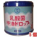 【あす楽対応】 西海製薬乳酸菌 肝油ドロップ 120粒 5個肝油ドロップ(オレンジ風味)