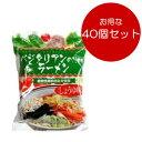 桜井食品 ベジタリアンのためのラーメン 醤油味 おまとめ買い(100g×40個)