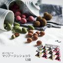 ホシフルーツマリアージュショコラ12袋DFDJ-12(-99023-02-)(t3)|内祝いギフトお菓子人気出産内祝い結婚内祝い快気祝い
