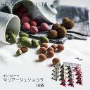 (年内出荷終了)ホシフルーツマリアージュショコラ18袋DFDJ-18(-99023-03-)(t3)|内祝いギフトお菓子人気出産内祝い結婚内祝い快気祝い