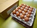【大寒】送料無料! 大寒の日に産んだまごころ卵 40個入り(割れ保証10個含む)1月20日発送のみとなります