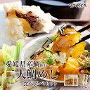 お中元 海鮮 ギフト 愛媛の2大鯛めし食べ比べセット 宇和島鯛めし 松山鯛めし ご当地グルメ 御祝