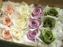 【色が選べるアソート】【花材 ローズ】プリザーブドフラワー フロールエバーベイビーローズ3輪×4色セット1箱12輪入り
