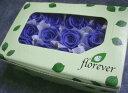 【花材 ローズ】プリザーブドフラワー フロールエバーベイビーローズ1箱12輪入り プリンセスブルー