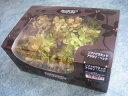 【花材】プリザーブドフラワー 大地農園ソフトピラミッドアジサイヘッド1箱 グリーンロゼ