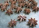 【花材】ドライ・木の実 大地農園スターアニス1袋約20個入り スノー