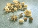 【花材】ドライフラワー ホワイト&ゴールド木の実アソート 1袋約30個入り