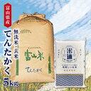 【新米】 米 5kg 送料無料 白米 無洗米 てんたかく 令和三年産 無洗米 富山県産 5キロ お米