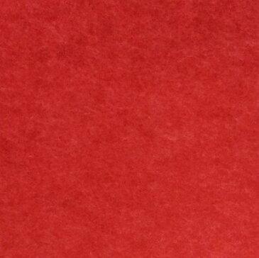 【最安値挑戦中!最大30倍】井上金庫 【FB-300M-RD(レッド) 30枚入/ケース】 フェルメノン スタンダード吸音パネル 300×300mm 厚9mm 300角 [♪▲▲]