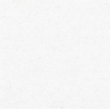 【最安値挑戦中!最大30倍】井上金庫 【FB-300M-WH(ホワイト) 30枚入/ケース】 フェルメノン スタンダード吸音パネル 300×300mm 厚9mm 300角 [♪▲▲]