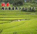 【果物王国】岡山県で環境良く育った米!岡山県産あきたこまち5kg×2【送料無料】【ギフト】【smtb-KD】