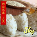 岡山県産 大麦 丸麦 5kg【TV 人気 話題 注文殺到 大麦 丸麦 国産 食物繊維 麦ごはん 夏】