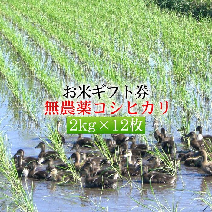 【お米ギフト券・新米】無農薬米コシヒカリ 2kg×12枚セット[送料無料]
