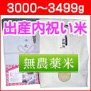 出産内祝い米 体重米[無農薬米・3000〜3499g]/送料...