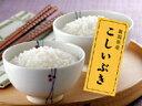 食感と旨味のある新潟米【新潟産こしいぶき 白米30kg】
