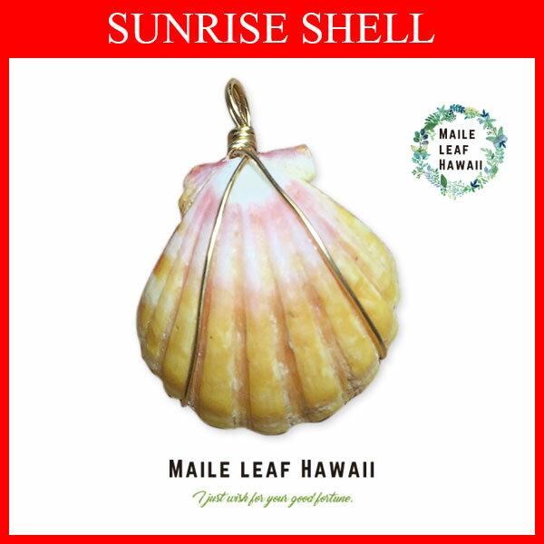 【送料無料】サンライズシェル ハワイ アクセサリー ネックレス  ハンドメイド 1点物 22mm レディース ロマンティックジュエリー ハンドメイドジュエリー ハワイアンアクセサリーsun-pt-0007 ハワイ諸島でしか見つける事の出来ないとても希少な貝のネックレス