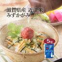 お米 5kg 滋賀県産 近江米 みずかがみ 特A <白米> 国産 袋 普通精米