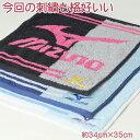 Mizuno8016ht-r