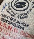 \今月のお勧めコーヒー!/繊細な味わいのパカマラ種!エルサルバドル パカマラエル・パカマラル農園キャラメル・バニラ・オレンジ!【200gパック】