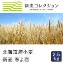【季節限定】強力粉 新麦コレクション 新麦 春よ恋 2.5kg 北海道産小麦粉【国産小麦】_