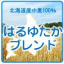 【賞味期限2011年5月30日】[チャック袋]江別製粉 北海道産パン用小麦粉はるゆたかブレンド <強...