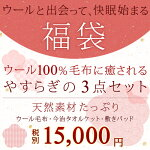 【福袋】西川の日本製ウール100%毛布(2万円相当)と今治タオルケット、綿100%敷きパッド お得な3点福袋+特典今治フェイスタオル 日本製 快眠 西川