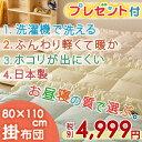 [プレゼント付き]お昼寝布団 掛け布団 日本製 80×110cm 洗濯機で洗える 清潔 保育園 洗え