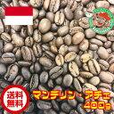 【おうち時間応援キャンペーン】【メール便・送料無料】マンデリン・アチェ 400g【自家焙煎コーヒー豆・レギュラーコーヒー】