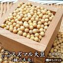 【ゆうパケット 送料込】北海道産 スズマル大豆(極小大豆)900g