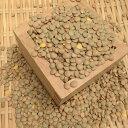 アメリカ産茶レンズ豆(皮あり)500g