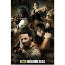ポスター ウォーキングデッド コラージュ 61cm×91.5cm ■ The Walking Dead TWD アンドリュー・リンカーン ゾンビ ドラマ 雑貨