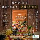【公式】万田酵素 ジンジャー 分包 ペーストタイプ(2.5g...