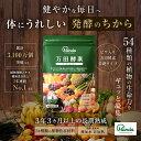 【公式】万田酵素 スタンダード 分包 ペーストタイプ(2.5...