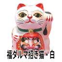 ショッピング贈答 招き猫 置物 まねきねこ 開店祝い 福ダルマ招き猫 白【あす楽対応】 楽ギフ_のし宛書 ラッピング無料 だるま だるまさんが 達磨 だるまちゃん 高崎だるま 贈答用 風水 風水グッズ】 合格