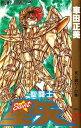 【中古】聖闘士星矢 [新書版] (1-28巻) 全巻セット_コンディション(良い)