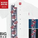 かりゆしウェア 沖縄アロハ アロハシャツ MANGO HOUSE マンゴハウス 国産 リゾート 結婚式 大きいサイズ メンズ 紅型美ら花ボーダー ( 開襟シャツ )