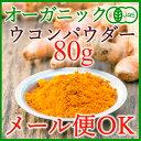 【セール特価!】クルクミンパワー!オーガニック ターメリックパウダー 80g(秋ウコン粉末)有機JAS 飲む前に!手作りカレーに!